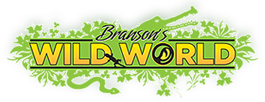 Branson's Wild World Logo